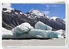 生態保育的模範-紐西蘭New Zealand